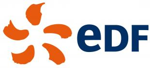 Language Courses London EDF Logo