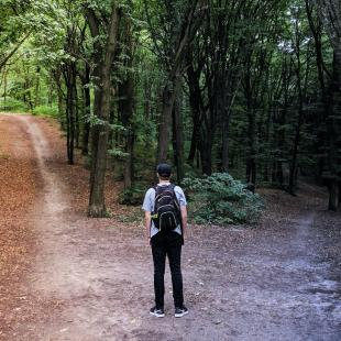 Man standing in front of two paths